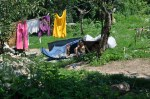 Building a tent